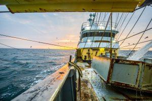 Noordzee - Pulsvisserij